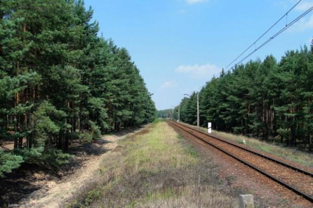 PKP PLK skonsultuje plany zawieszania kolejowych tras towarowych z samorządami
