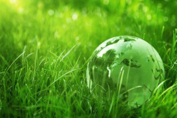95 tysięcy zł na edukację ekologiczną
