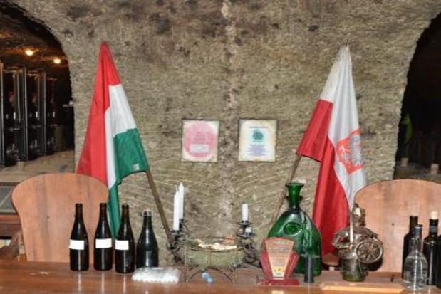 Podkarpackie winnice czekają na turystów