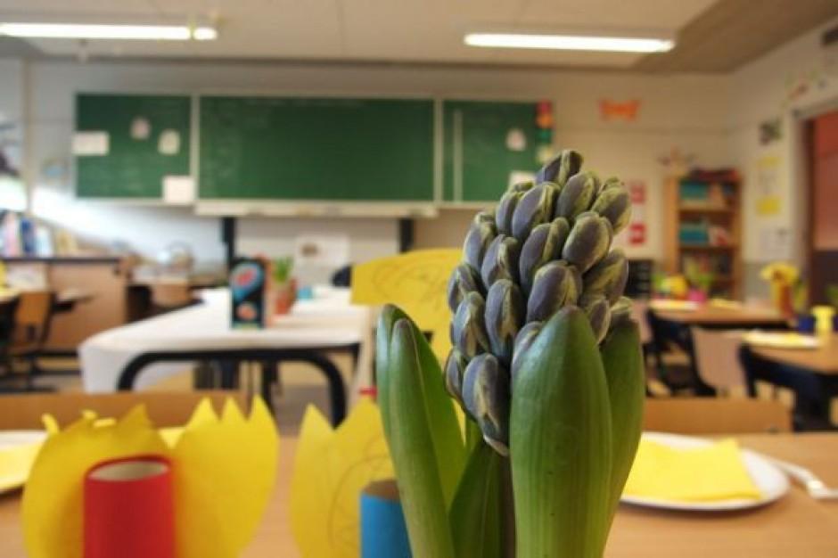 Nauczanie po polsku i niemiecku w opolskich szkołach i przedszkolach