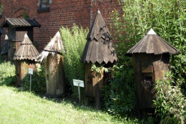 Muzeum Pszczelarstwa w Swarzędzu grozi zamknięcie
