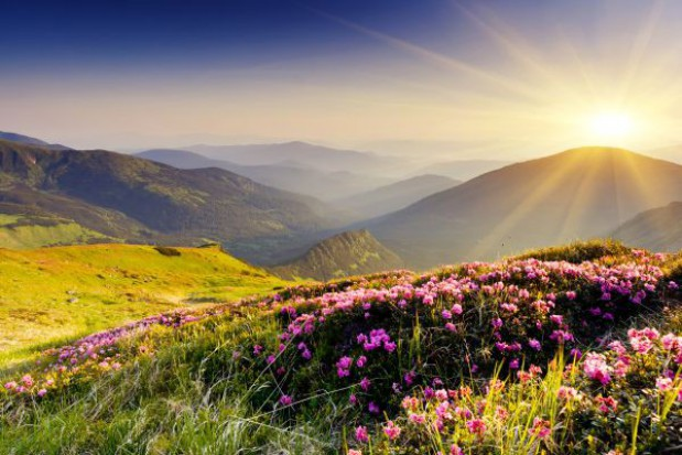 Ograniczenia prawne utrudniają rozwój gmin z chronionymi obszarami przyrody