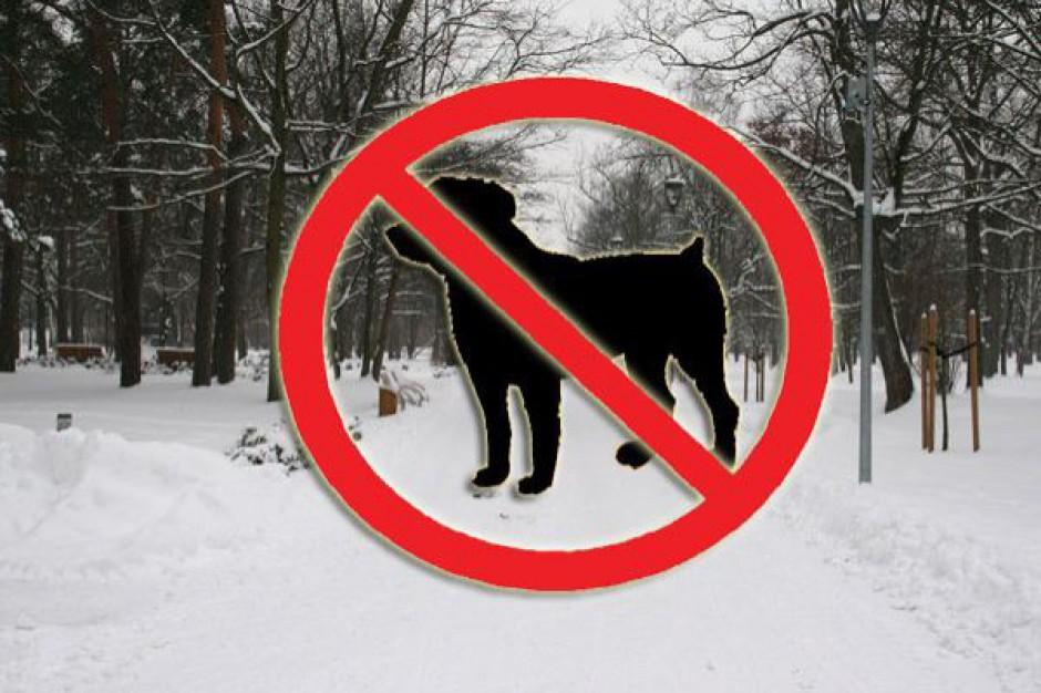 Konstancin: do parku psom wstęp wzbroniony