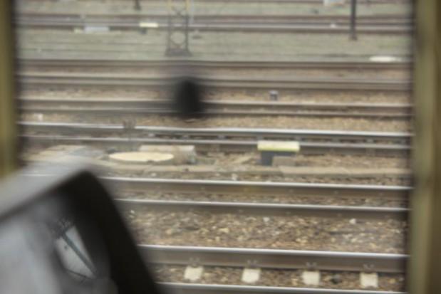 Transport kolejowy potrzebuje kompleksowego planu