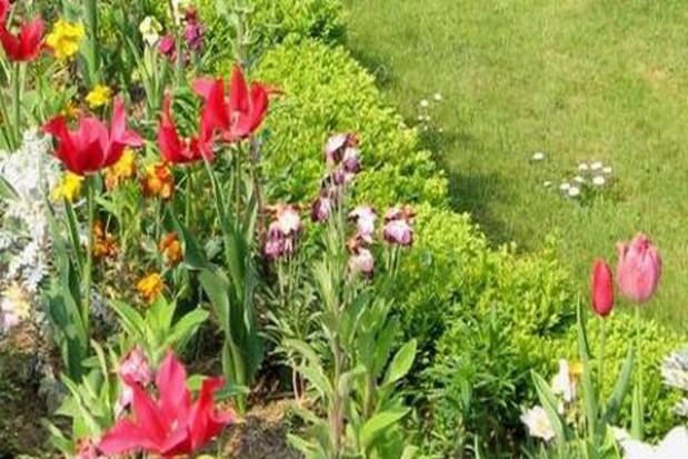 PO ma własny projekt ustawy o ogródkach