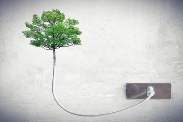 Ustawa poprawi energetykę budynków