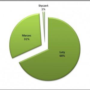 """Rozłożenie procentowe ilości opublikowanych informacji na temat przyznanych dotacji """"na zabytki"""" – w poszczególnych miesiącach."""