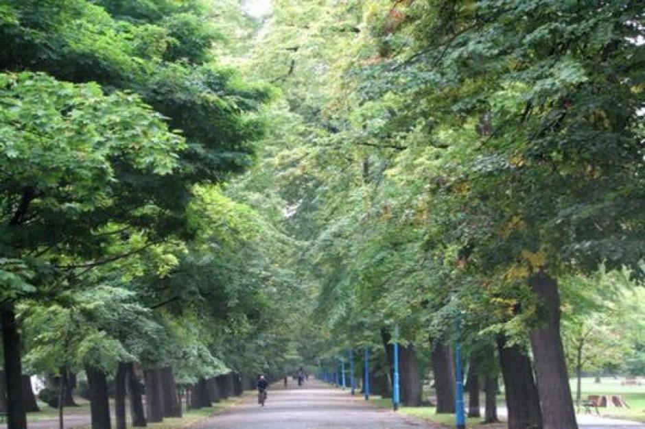 Legnica szykuje park do nowego sezonu