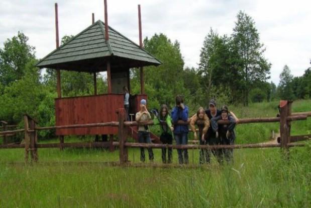 Ekolodzy zabijają Puszczę Białowieską