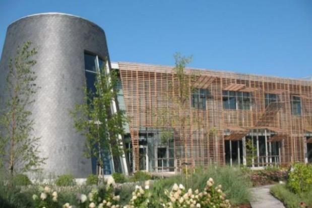 Warsztaty wiklinowe w Europejskim Centrum Bajki