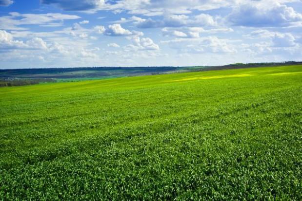 Ceny ziemi osiągają rekordowy poziom