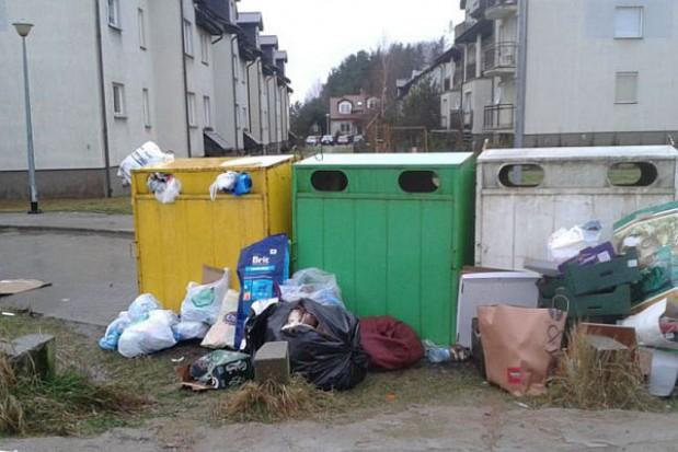 Śmieciowych niuansów ciąg dalszy