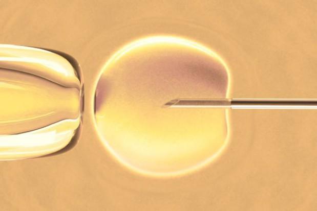 Nie będzie projektu dotyczącego in vitro