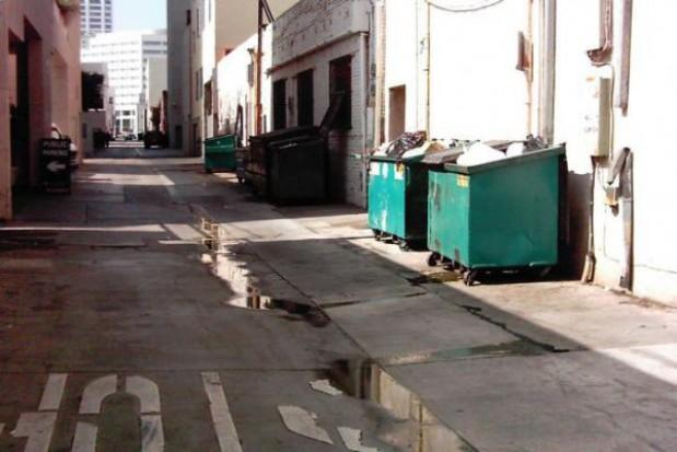 Powinna być kampania wyjaśniająca zasady ustawy śmieciowej