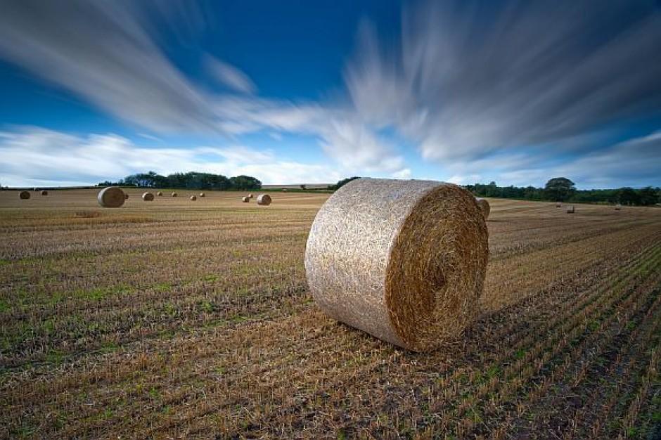 Apel o wsparcie młodych rolników