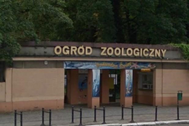 Stare ZOO w Poznaniu do rozbiórki?