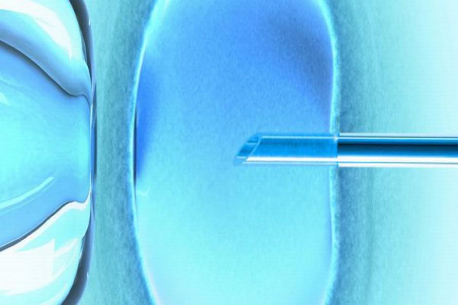 Sosnowiec dofinansuje in vitro