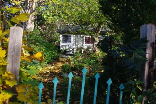 Co ze śmieciami z ogródków działkowych?