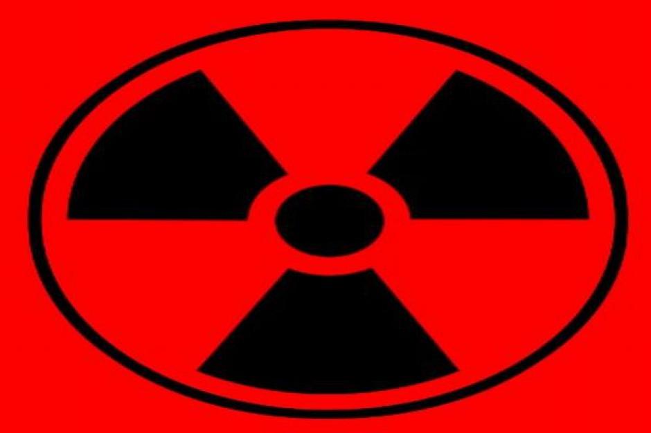 Pierwszy blok jądrowy w 2024 roku