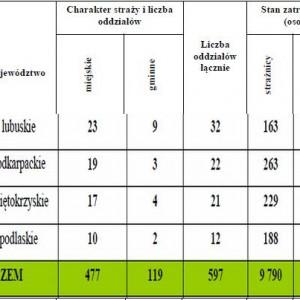 Charakter funkcjonujących straży, wraz z liczbą osób zatrudnionych.