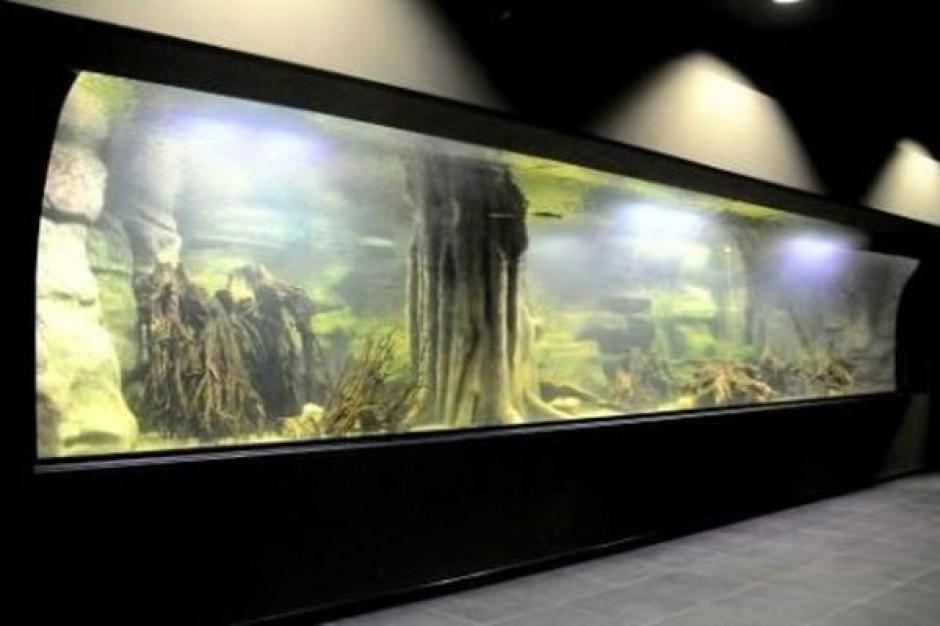 Gliwickie akwarium zostanie w końcu otwarte
