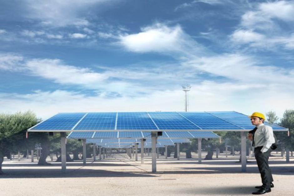 Polacy chcą produkować energię