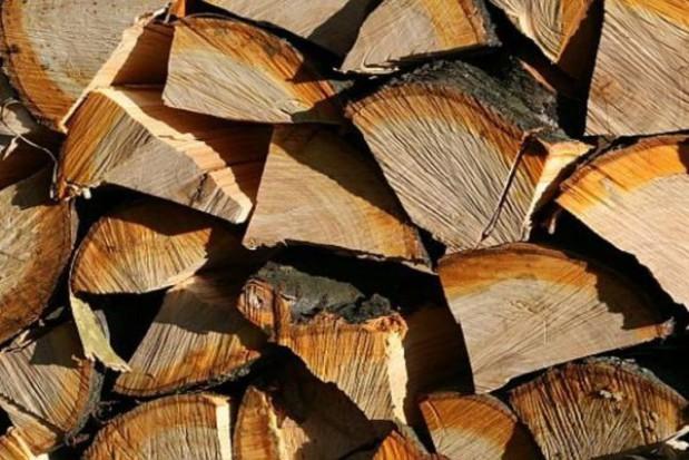 Miasta źle gospodarują drewnem