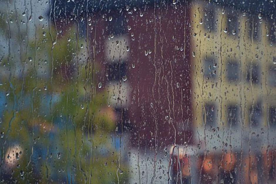 Najemcy lokali w Opolu winni miastu miliony