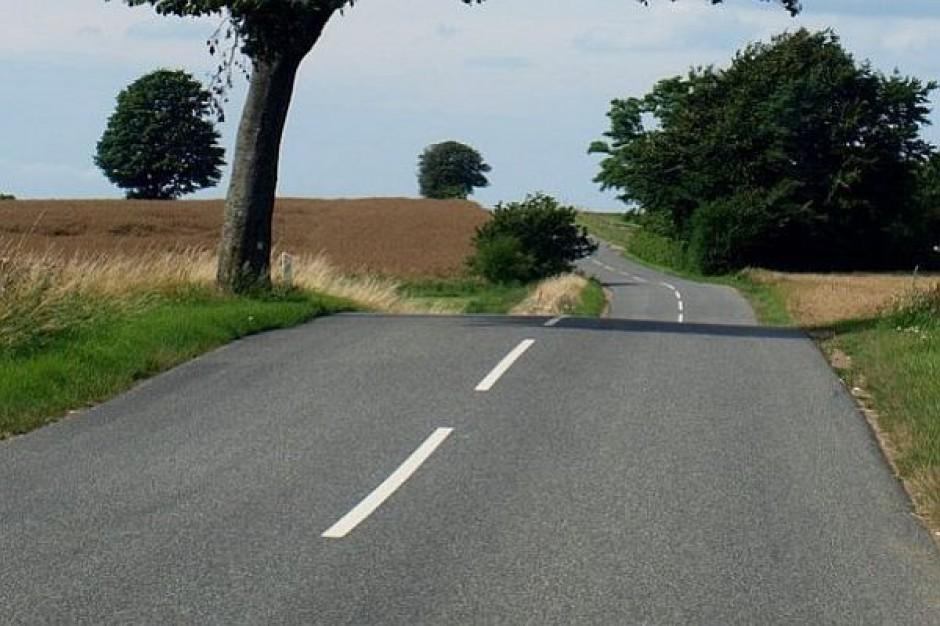 NIK prześwietli ogromną sieć zaniedbanych dróg