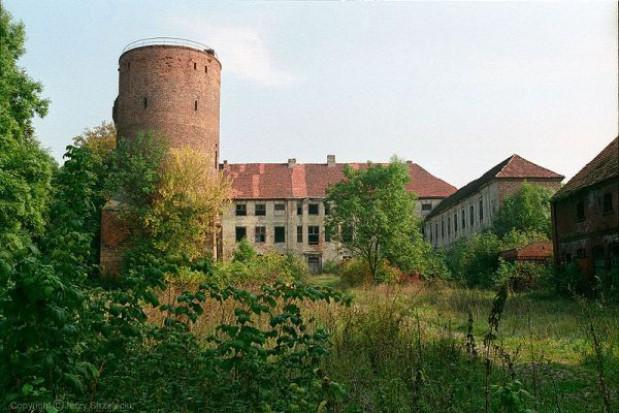 Odbudowa zamku w Swobnicy