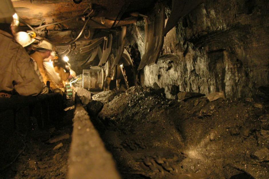 Duże zainteresowanie wznowieniem wydobycia węgla