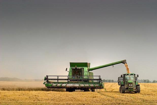 Unijne pieniądze wyłudzają głównie rolnicy