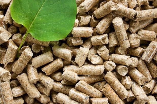 Zakazu palenia drewnem nie będzie
