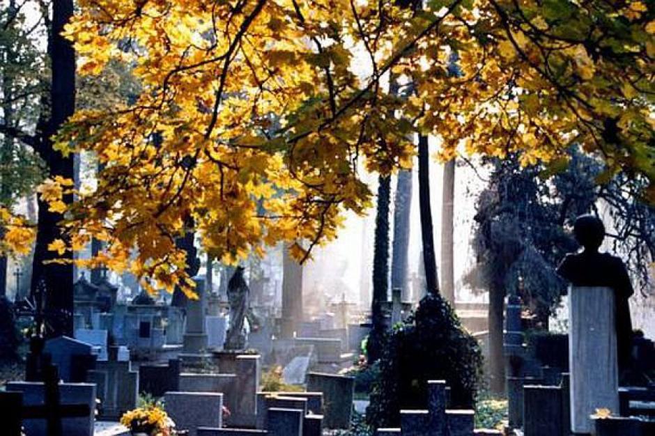 Bezpłatne autobusy zawiozą na cmentarz