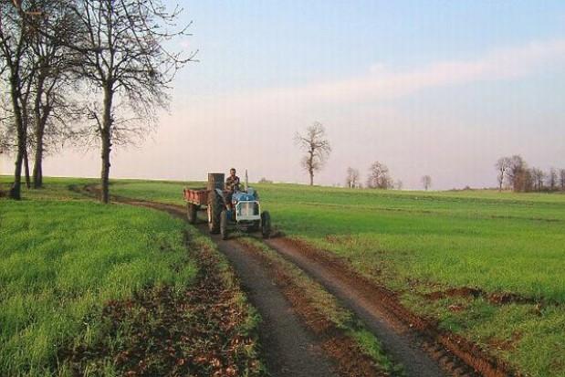 4,5 mld euro dla obszarów wiejskich