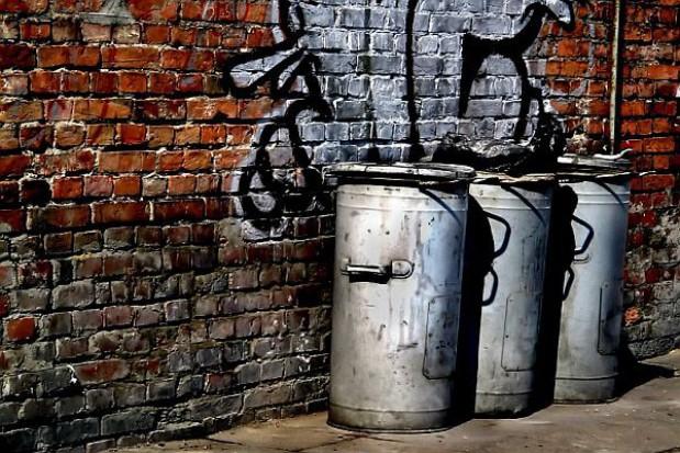 Ustawa śmieciowa częściowo niezgodna z konstytucją