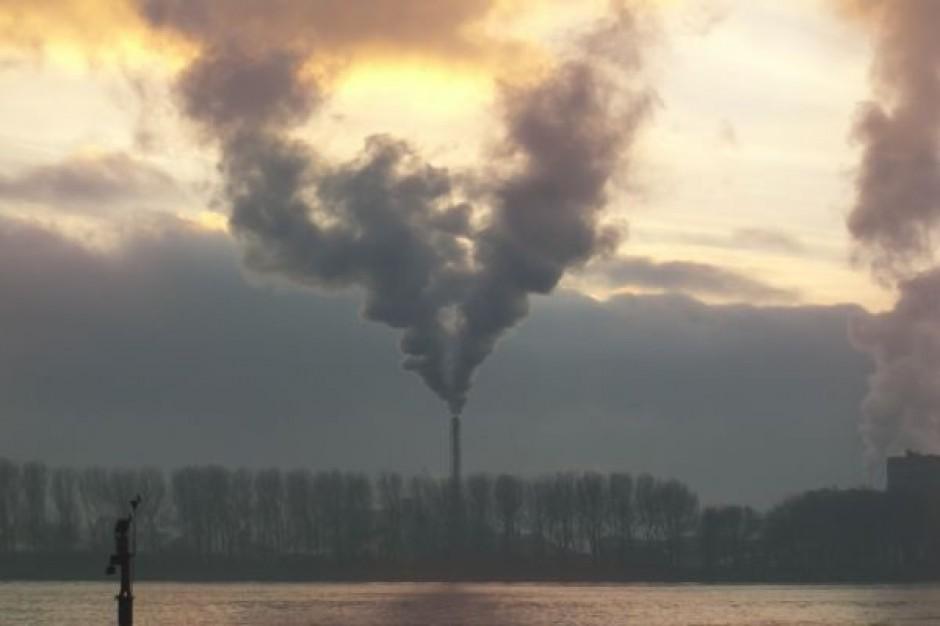 Samorządy muszą chronić klimat. Bez tego nie dostaną pieniędzy z UE