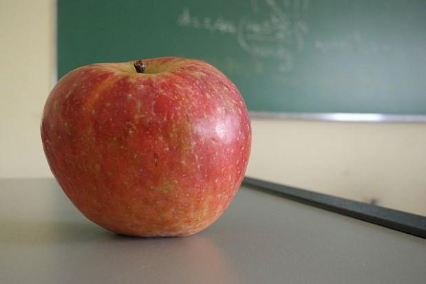 Zasady rekrutacji do przedszkoli i szkół
