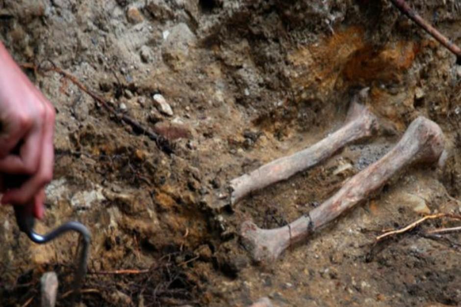 Archeolodzy odkrywają ślady dawnego miasta