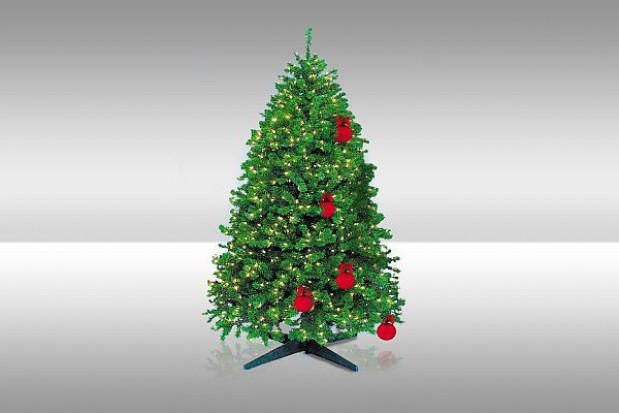 Co zrobić z choinką po świętach? Oddać na biomasę