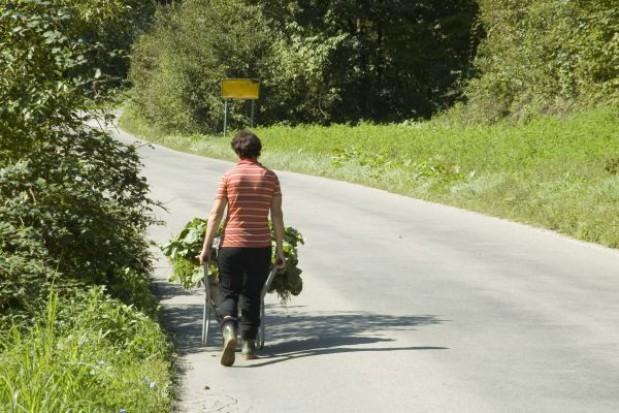 Samorządowcy apelują o uruchomienie 250 mln zł na modernizację dróg