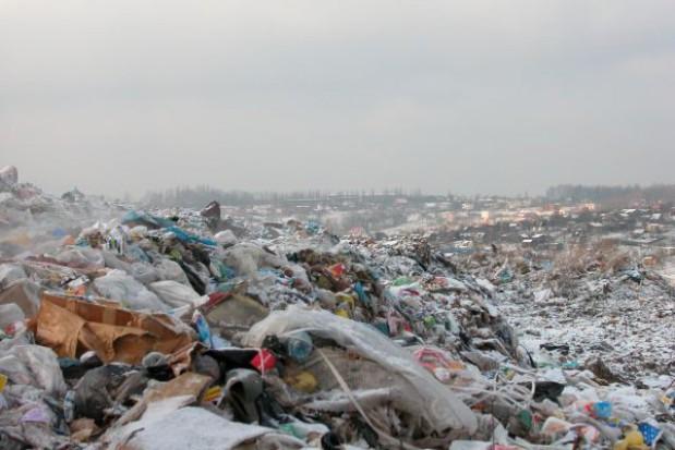 Segregujemy śmieci nie tak jak trzeba