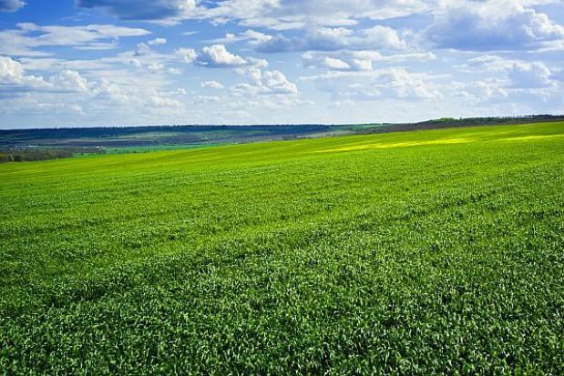 Grunty na Dolnym Śląsku są coraz droższe