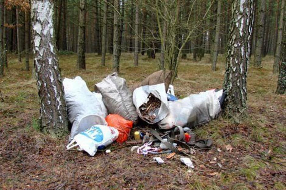 Lasy Państwowe powinny przedstawić informację, jak dużo odpadów tam trafia
