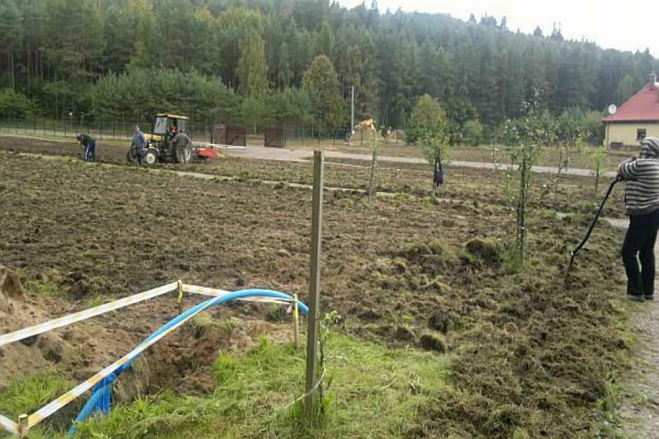 Są pomysły na zagospodarowanie ogrodu Marszewo w Gdyni