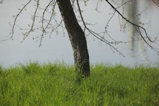 Dolnośląskie samorządy otrzymały 75 mln zł na usuwanie skutków powodzi