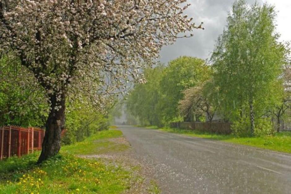 Samorządy wolą budować drogi z Trzaskowskim niż z Bieńkowską