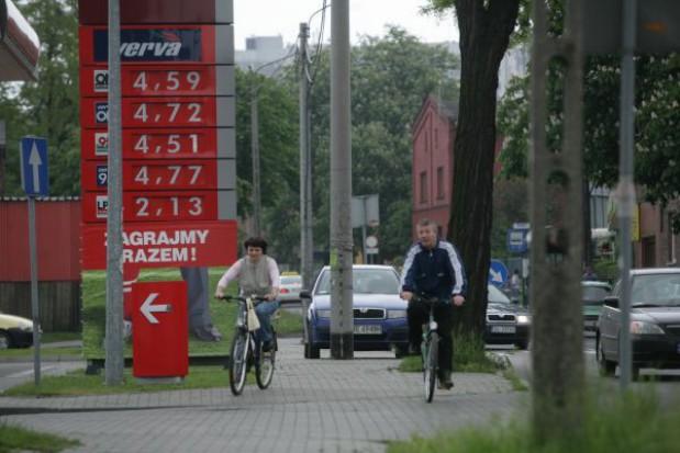 Władze Gliwic chcą zbudować sieć dróg rowerowych za 250 mln zł