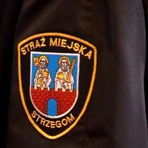Strzegom  Straż miejską zlikwidowano w 1 kwietnia 2012. Jak zaznacza Zbigniew Suchyta, burmistrz Strzegomia decyzja nie była podyktowana względami ekonomicznymi. Chodziło o formułę funkcjonowania tej formacji, która nie zdała egzaminu. Wymienia m.in. dużą absencję oraz wewnętrzne spory.  Uchwałę o likwidacji przygotował burmistrz Strzegomia po zapoznaniu się z audytem straży miejskiej i analizie funkcjonowania tej formacji. Decyzja rady miejskiej nie oznaczała całkowitej likwidacji straży miejskiej. Została ona włączona w struktury urzędu miejskiego, gdzie utworzono wydział straży miejskiej. Ma on zajmować się sprawami edukacyjnymi, porządkowymi czy sanitarnymi związanymi z ustawą śmieciową. (fot. YouTube)