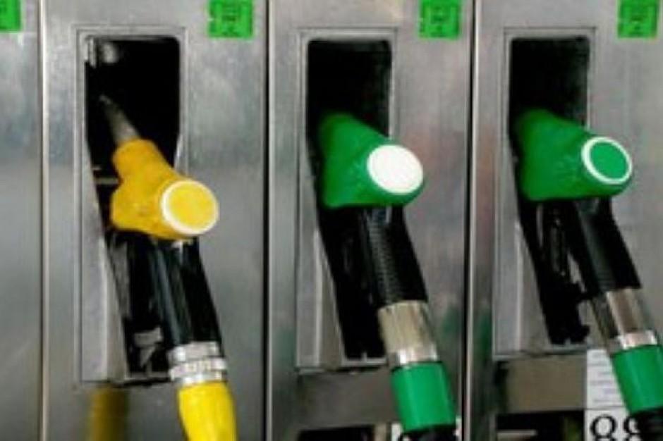 NIK: biurokracja i akcyza hamują wykorzystywanie biopaliw i biokomponentów
